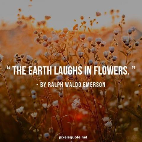 Flower quotes short.