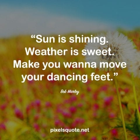 Funny Summer Quote.
